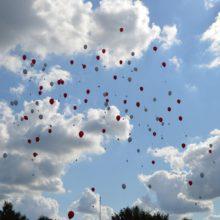 ballonnen vliegen de lucht in, wie wint de prijs